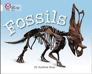 Fossils: Band 10/White af Andrew Ross
