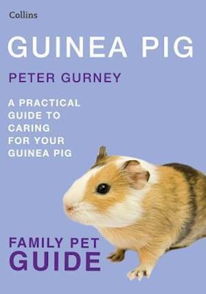 Guinea Pig af Peter Gurney