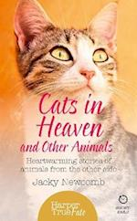 Cats in Heaven: And Other Animals. Heartwarming Stories of Animals from the Other Side (HarperTrue Fate A Short Read)