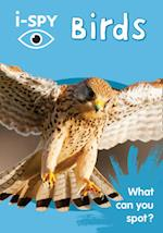 i-Spy Birds: What Can You Spot? (Collins Michelin i SPY Guides)