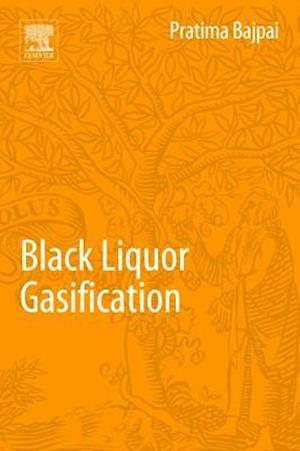 Black Liquor Gasification af Dr. Pratima Bajpai