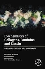 Biochemistry of Collagens, Laminins and Elastin