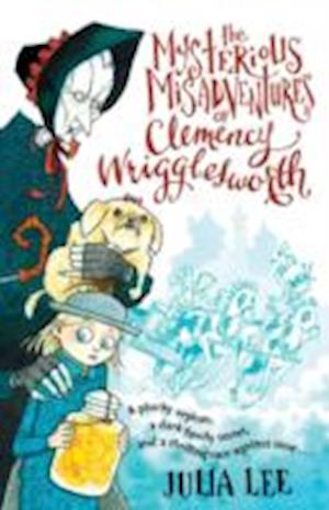 The Mysterious Misadventures of Clemency Wrigglesworth af Julia Lee
