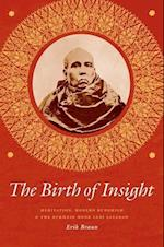 The Birth of Insight (BUDDHISM AND MODERNITY)