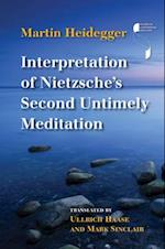 Interpretation of Nietzsche's Second Untimely Meditation (Studies in Continental Thought Hardcover)