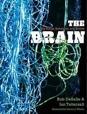 The Brain af Rob DeSalle, Patricia J Wynne, Ian Tattersall
