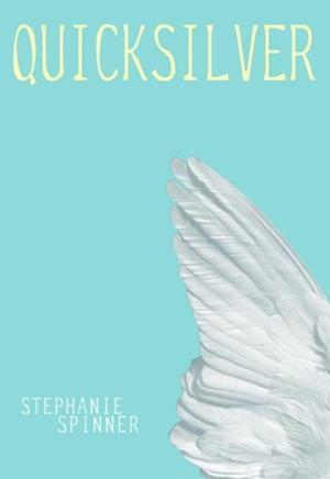 Quicksilver af Stephanie Spinner