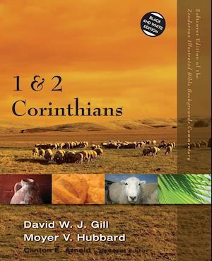 1 and 2 Corinthians af Moyer V. Hubbard, David W. J. Gill
