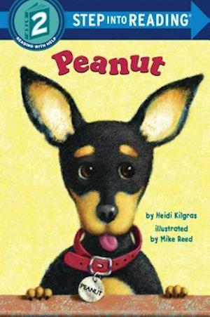 Peanut af Heidi Kilgras