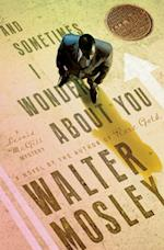And Sometimes I Wonder About You af Walter Mosley