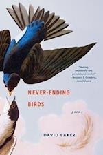 Never-Ending Birds af David Baker