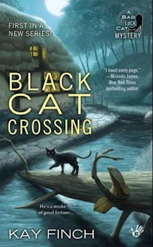 Black Cat Crossing af Kay Finch