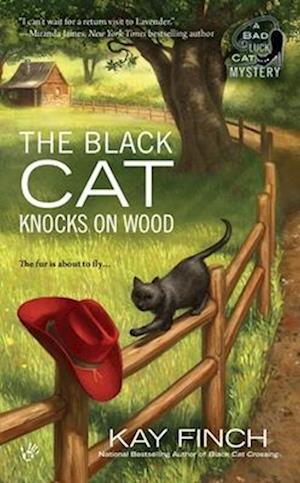 The Black Cat Knocks on Wood af Kay Finch