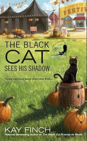 Bog, paperback The Black Cat Sees His Shadow af Kay Finch