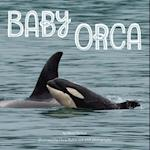 Baby Orca af Mary Batten