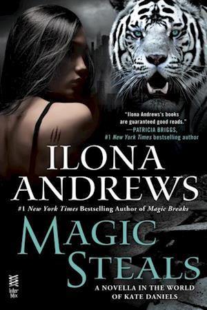 Magic Steals af Ilona Andrews