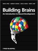 Building Brains af Peter C Kind, John O Mason, John Mason
