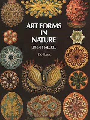 Art Forms in Nature af Ernst Haeckel, Ernst Heinrich Philipp August Haeckel
