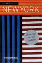 The Art Guide: New York (Art Guide)