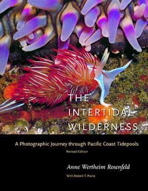 The Intertidal Wilderness af Anne Wertheim Rosenfeld