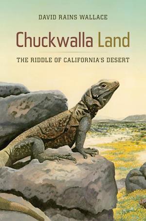 Chuckwalla Land af David Rains Wallace