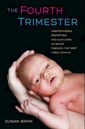 The Fourth Trimester af Susan Brink
