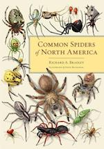 Common Spiders of North America af Richard A. Bradley