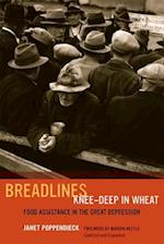 Breadlines Knee Deep in Wheat af Janet Poppendieck