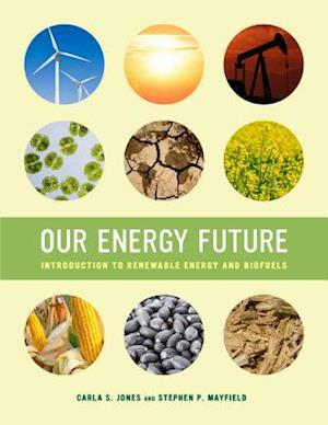 Our Energy Future af Carla S. Jones