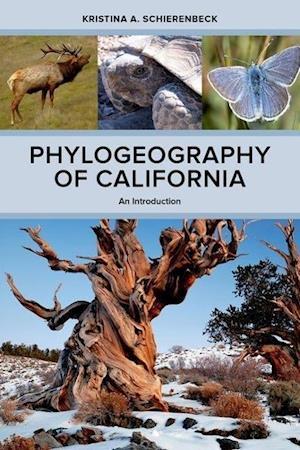 Phylogeography of California af Kristina A. Schierenbeck