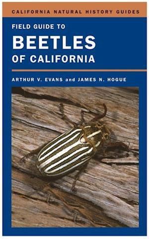 Field Guide to Beetles of California af Arthur V. Evans, James N. Hogue