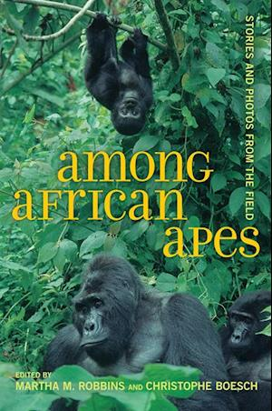 Among African Apes