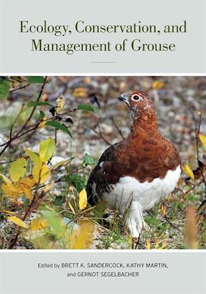 Ecology, Conservation, and Management of Grouse