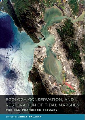 Ecology, Conservation, and Restoration of Tidal Marshes