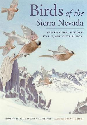 Birds of the Sierra Nevada af Ed Pandolfino, Ted Beedy