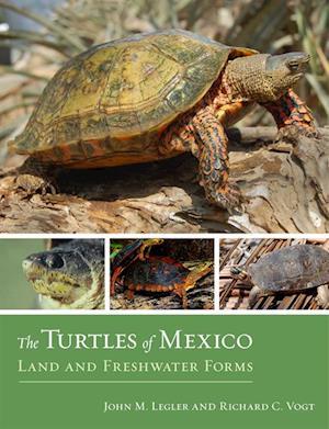 Turtles of Mexico af Richard C. Vogt, John Legler