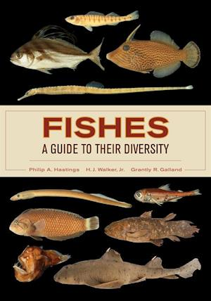Fishes: A Guide to Their Diversity af Philip A. Hastings