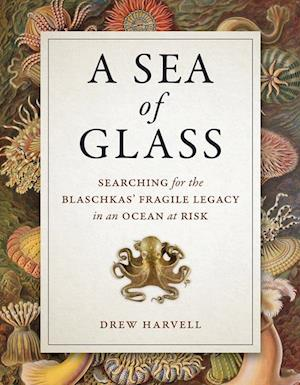 Sea of Glass af Drew Harvell