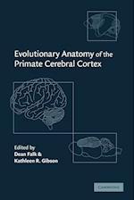 Evolutionary Anatomy of the Primate Cerebral Cortex af Kathleen R Gibson, Dean Falk