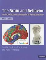 The Brain and Behavior