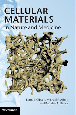 Cellular Materials in Nature and Medicine af Brendan A Harley, Lorna J Gibson, Michael F Ashby