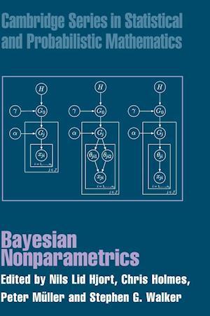 Bayesian Nonparametrics af Nils Lid Hjort, Chris Holmes, Peter Muller