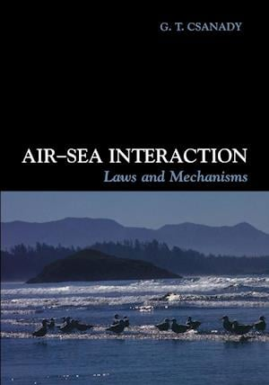 Air-Sea Interaction af G T Csanady, Mary Gibson