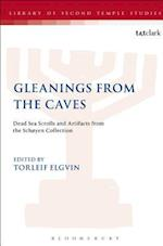 Gleanings from the Caves (Library of second temple studies, nr. 71)
