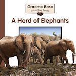 Herd of Elephants (Little Bug Books)