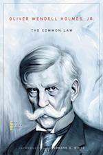 Common Law af Oliver Wendell Holmes