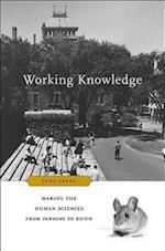 Working Knowledge af Joel Isaac