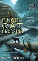 Black Cat Crossing af Kay Finch