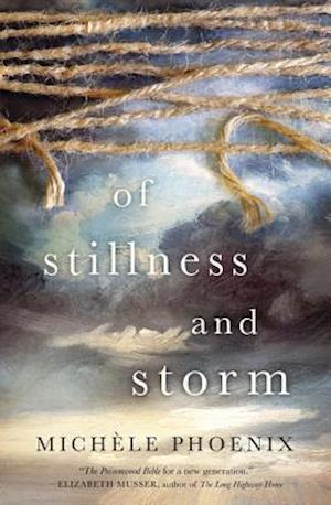 Bog, paperback Of Stillness and Storm af Michele Phoenix
