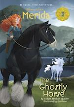 The Ghostly Horse (Merida)
